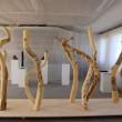 Ausstellung Bildhauerhalle Bonn September 2013